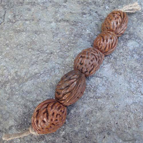 Peach Stone Beads