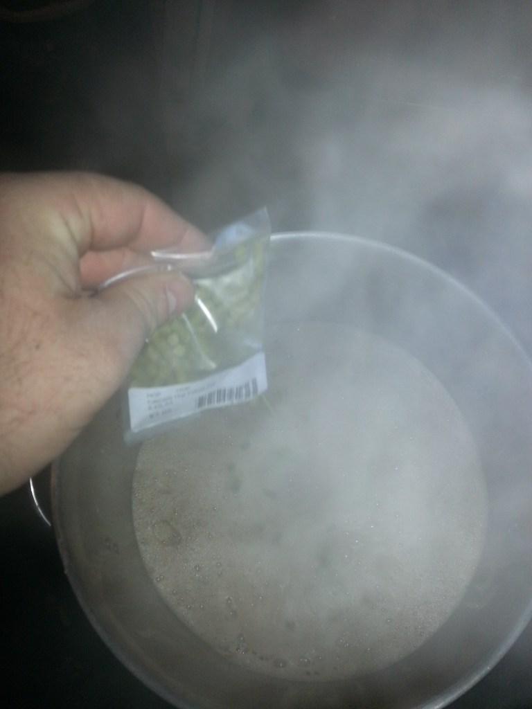Adding bittering hops to homebrew