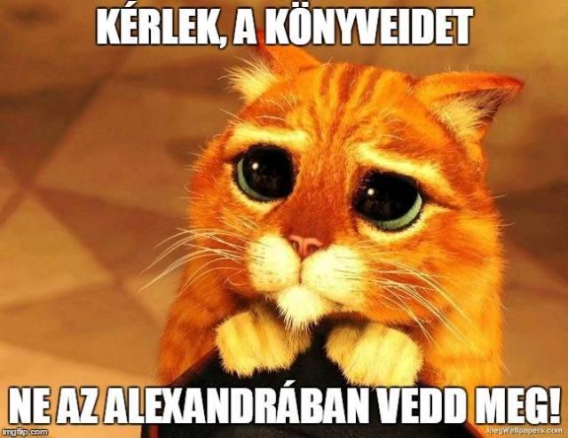 alexandra-bojkott