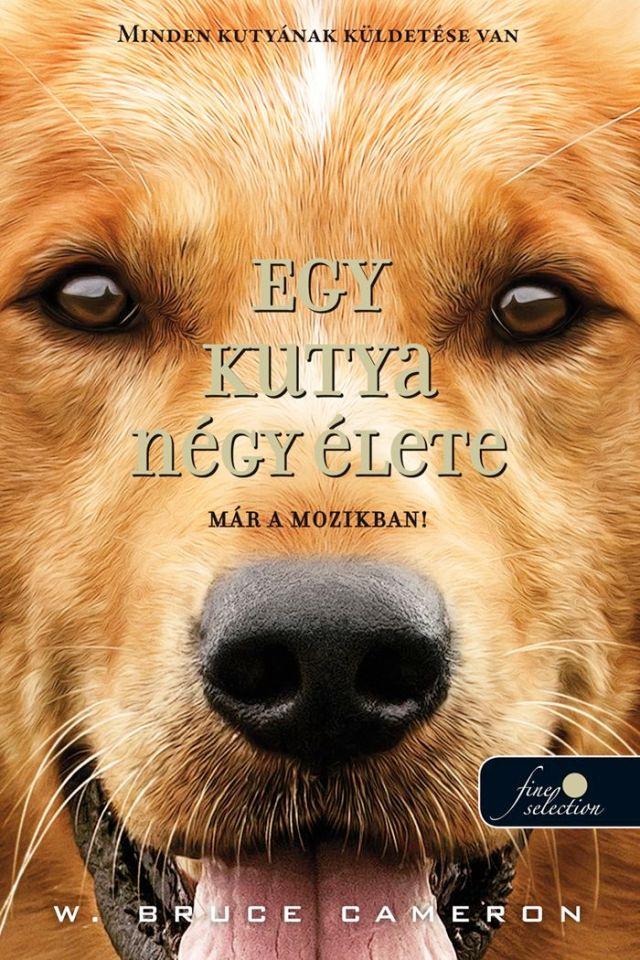 kutya_negy_elete_borito