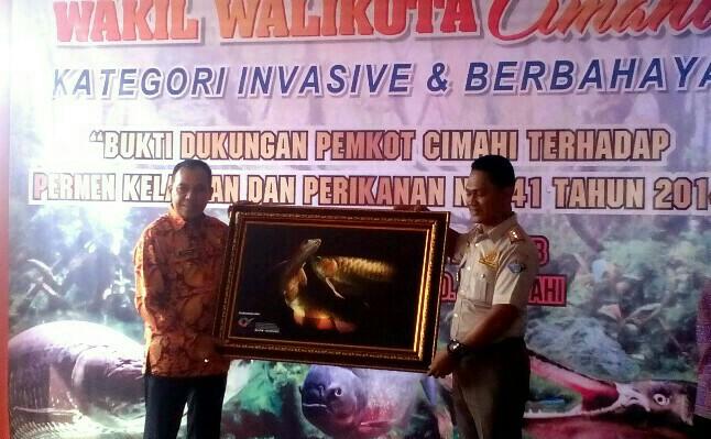 Disela acara serah terima ikan peliharaan milik Wakil Walikota Cimahi Ngatiyana kepada BKIPM Bandung, dilakukan pemberian cinderamata dari BKIPM Bandung kepada Wakil Walikota Cimahi