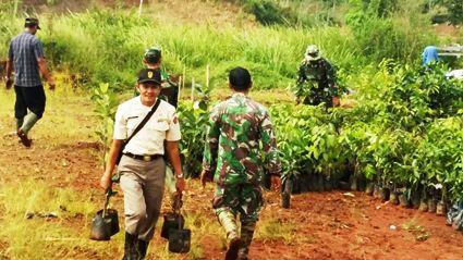 Penghijauan yang dilaksanakan oleh Pussenarmed di Desa Girimukti Kabupaten Bandung Barat
