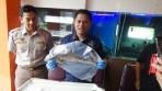 Kepala BKIPM Bandung Dedy Arief menunjukan ikan hiu dogfish yang akan dimusnahkan