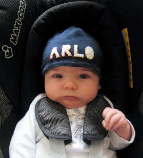 Arlo baby name. What does Arlo mean? Baby boy name Arlo