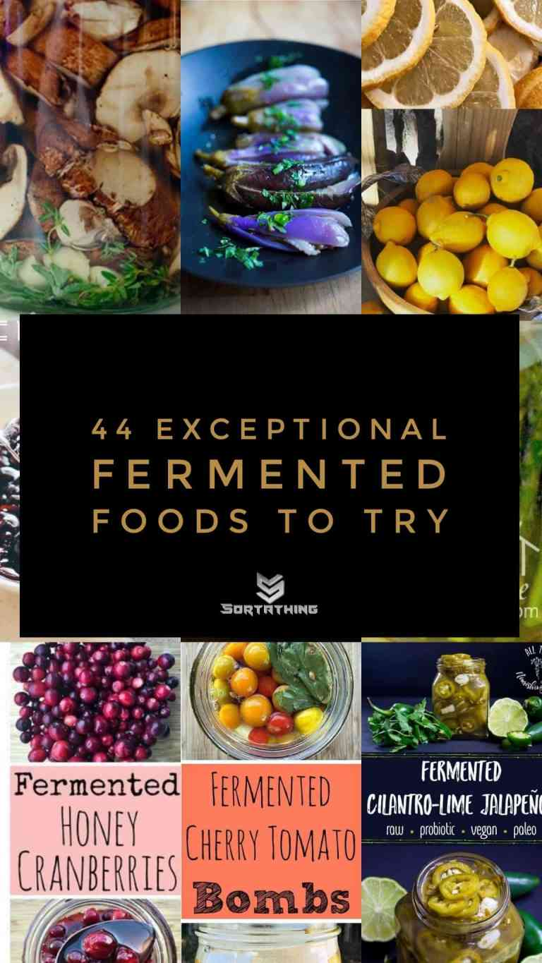 Fermented Foods Footer Image