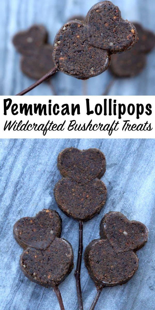 Pemmican Lollipops
