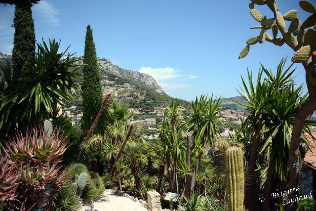 Ezr jardin botanique 210714 BL 034
