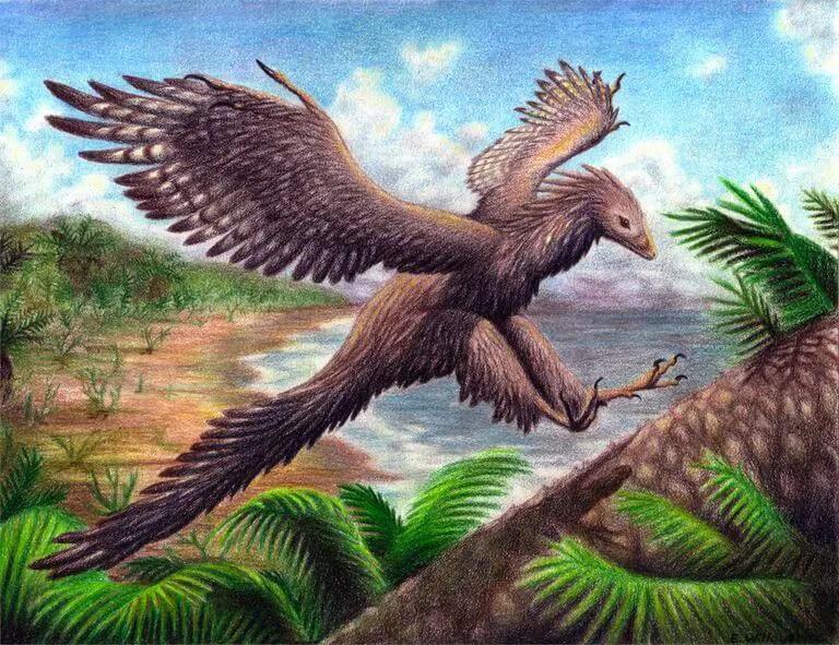 Dinosaur Names - Archaeopteryx