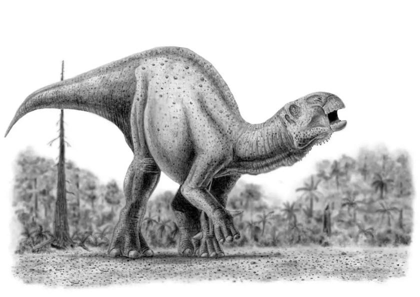 Dinosaur names - Iguanodon
