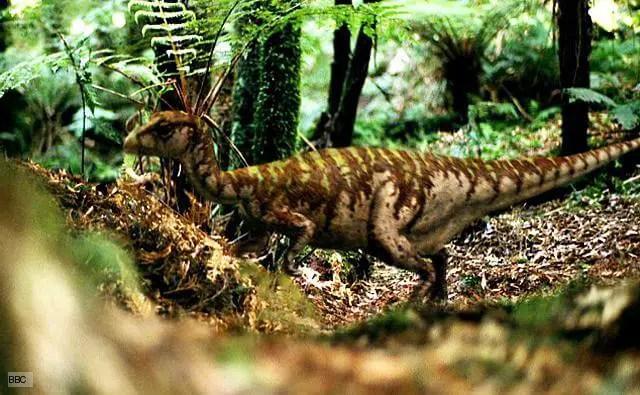 Dinosaur names - Leaellynasaura