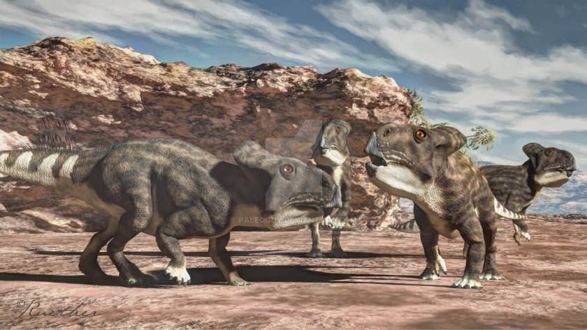 Dinosaur names - Protoceratops