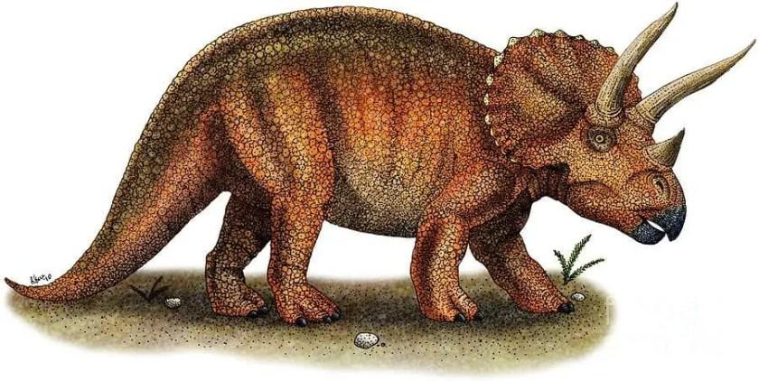 Dinosaur names - Triceratops