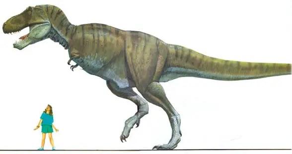 Dinosaur names - Tyrannosaurus