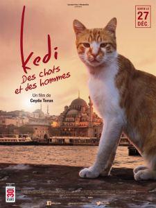 Ciné Rencontre // Kedi - Des chats et des hommes @ Cinéma Gérard Philippe | Gujan-Mestras | Nouvelle-Aquitaine | France