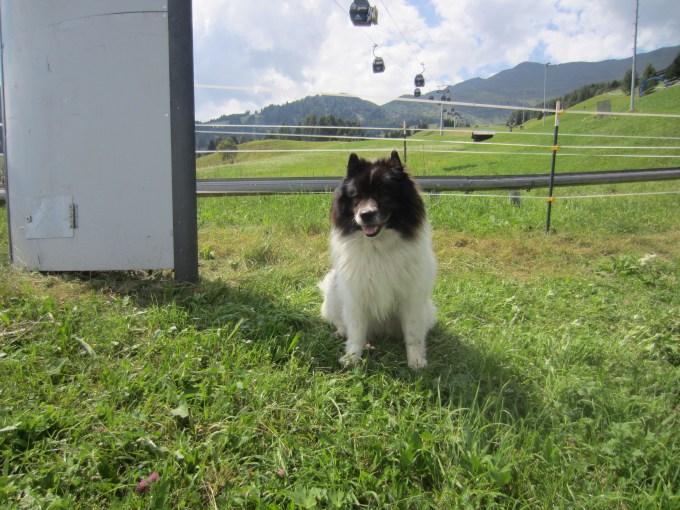 Gondeln in Tirol