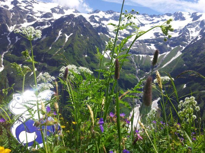 Reiseziel Schweiz gegen Fernweh