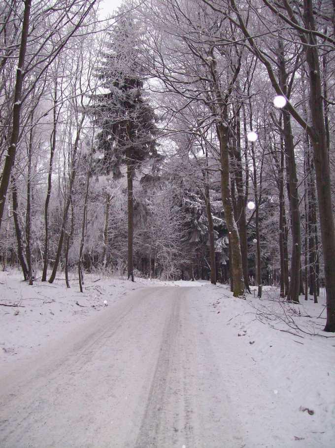 schöne Reiseziele im Winter