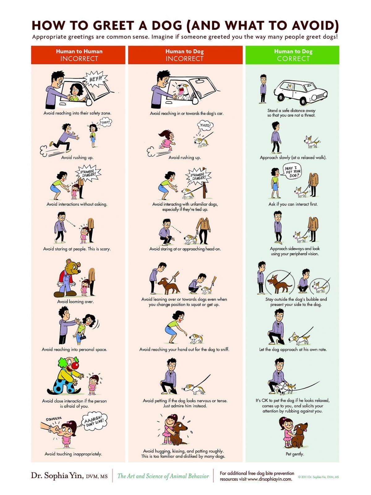 Hundesprache Und Howto Comics