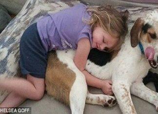 Hund og døv jente