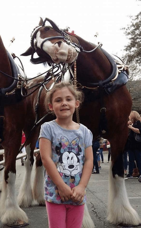 smilende hest