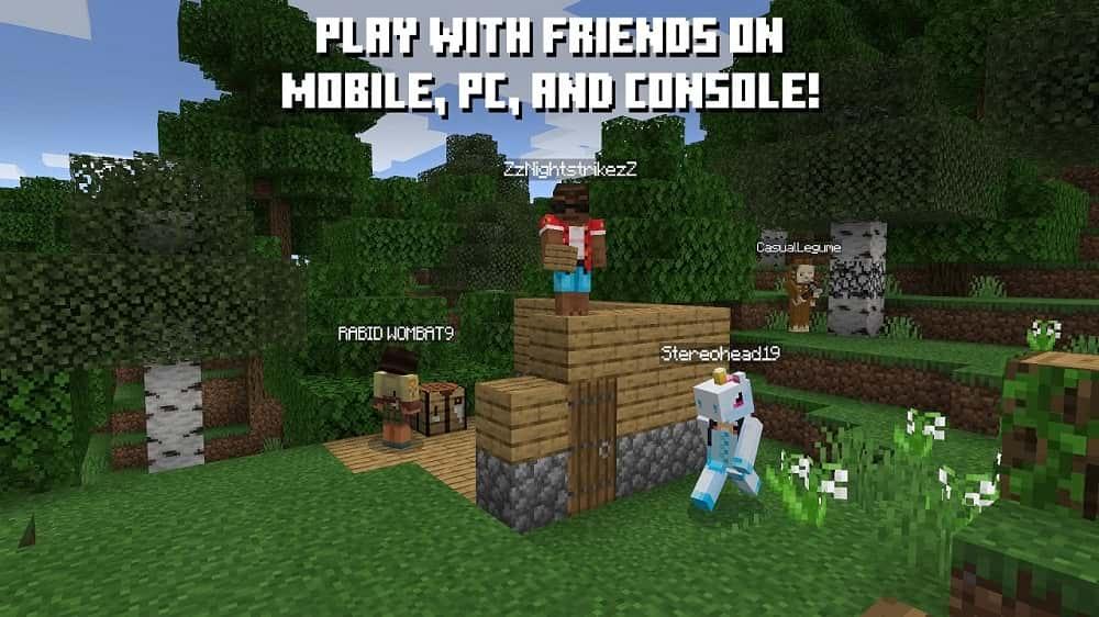 Minecraft Switch Screenshot05