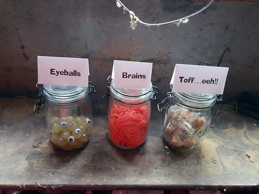 eyeballs and brains