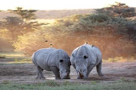 اهم الاماكن السياحية في بوتسوانا