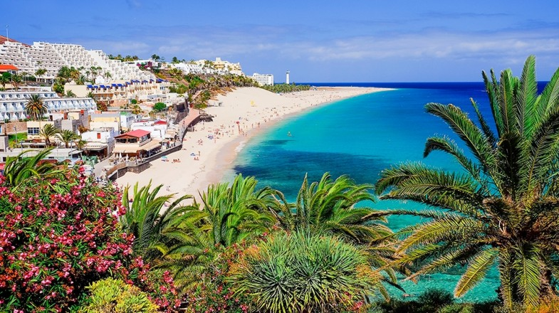 canary-islands-fuerteventura-1547025436-785X440