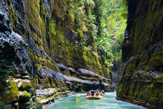 الأنهار فيجي