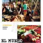 """Proyecto de Ciencias """"Mundo vegetal"""""""