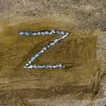 Escritura a la carta de Santillana: Letra Z
