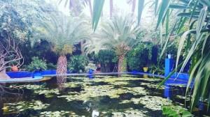 Ysl gardens