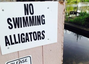 28-Year-Old Texas Man Killed by Alligator During Late-Night Swim
