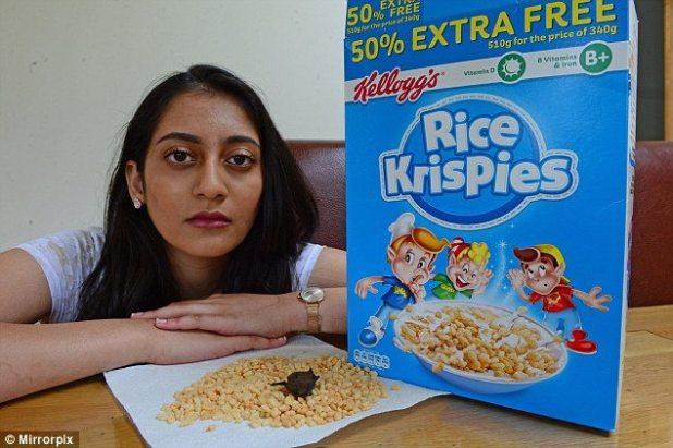 Horrified Scottish Teen Found Dead Bat in Rice Krispies Box