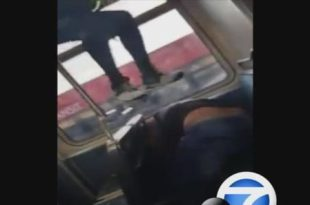 VIDEO: Woman Assaults Man on Metro Blue Line Train After He Used Racial Slurs