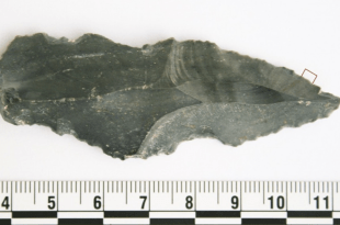 This 250,000-Year-old Tool Was Used to Butcher a Rhinoceros