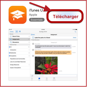 Telecharger Applicatios App Store iOS Comment créer un identifiant Apple sans carte bancaire