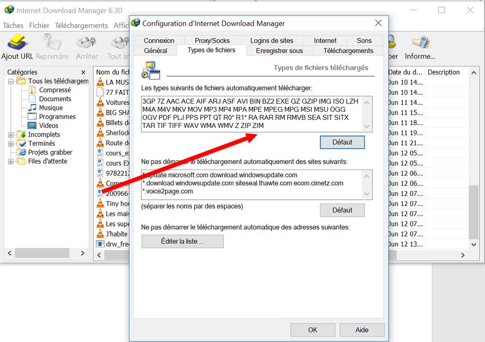 types de fichiers dans IDM Comment télécharger n'importe quel type de fichier avec IDM