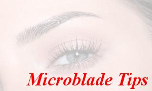 microblade tips