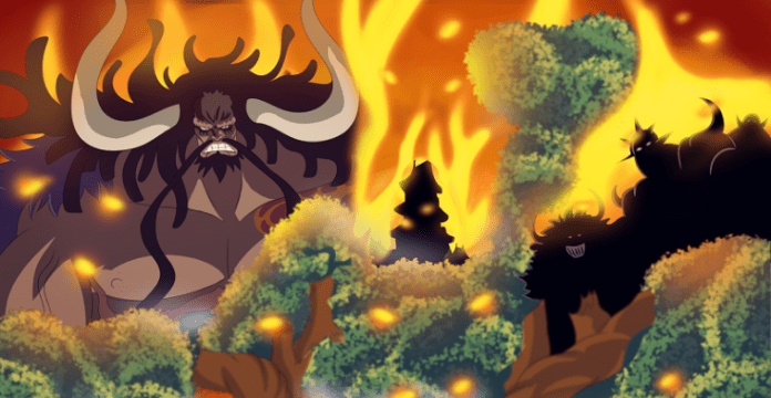 King the Wildfire – The Former Warden of Impel Down