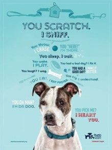 Austin-Humane-Poster