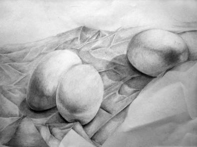 drawing-of-eggs