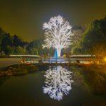 Off the beaten path spot to enjoy far in Kyoto Botanical Garden of illumination is 200 yen