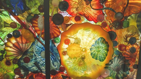 Detail of Chihuly glass art.