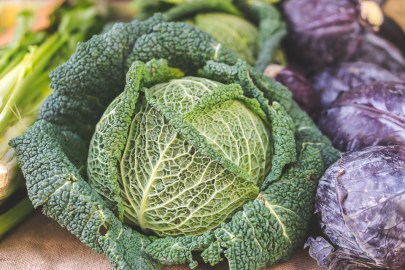 Farmers market cabbage