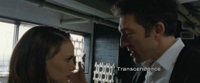 Black Swan 2010 (1080p x265 10bit Tigole) (4)