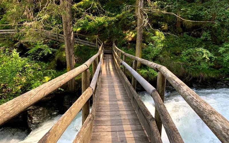 Jeder Walderlebnispfad führt in die Tiefen der eigenen Seele.