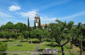 soul-traveller-camino-portugese-central_153