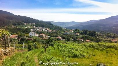 soul-traveller-camino-portugese-central_170