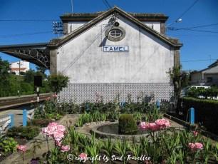 soul-traveller-camino-portugese-central_345
